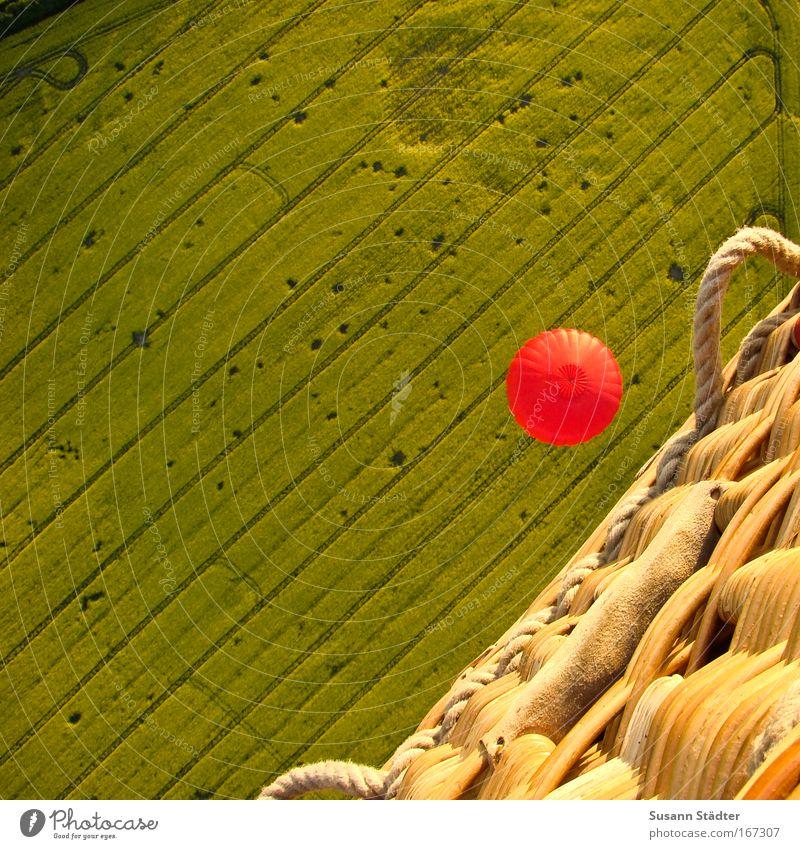 Fly over the Rapsfeld Farbfoto mehrfarbig Außenaufnahme Luftaufnahme Muster Strukturen & Formen Menschenleer Textfreiraum links Textfreiraum oben Tag Kontrast