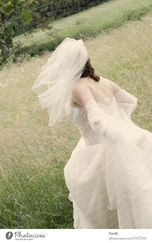 windy wedding Mensch schön Baum Sommer Erwachsene Wiese feminin Leben Gefühle Bewegung Gras Glück Garten Park Feste & Feiern gehen