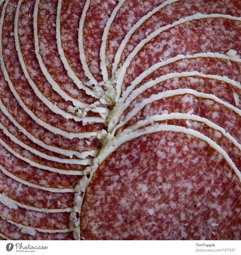 Tolle Wurst #2 Makroaufnahme Menschenleer Vogelperspektive Lebensmittel Fleisch Wurstwaren Ernährung Fett ungesund Salami Spirale Wendeltreppe Fleischfresser