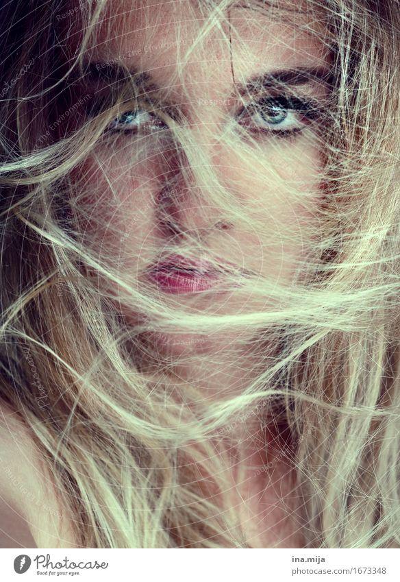 im wirrwarr elegant schön Kosmetik Schminke Mensch feminin Jugendliche Erwachsene Haare & Frisuren Gesicht 1 18-30 Jahre 30-45 Jahre Mode blond langhaarig