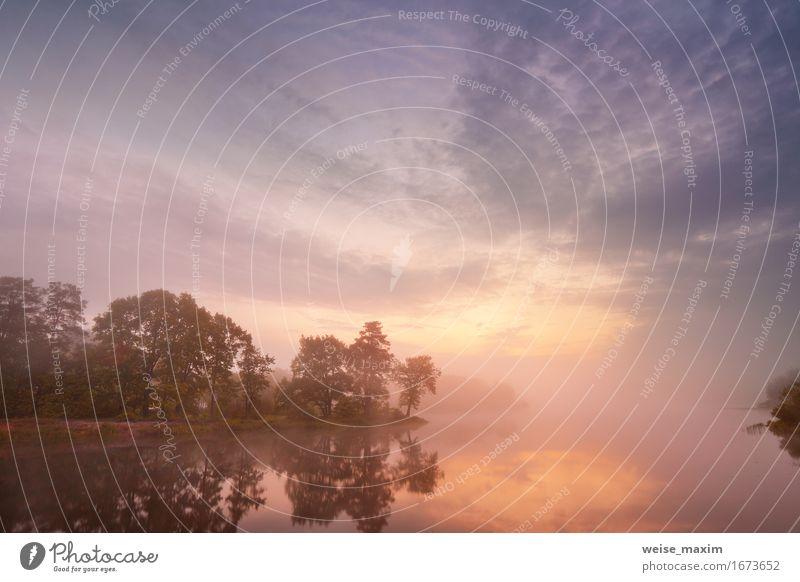 Himmel Natur Ferien & Urlaub & Reisen Sommer schön Wasser Baum Landschaft rot Wolken Wald Umwelt Herbst natürlich See Nebel
