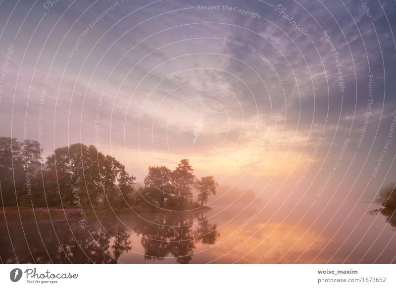 Nebelhafter Morgen auf dem See Himmel Natur Ferien & Urlaub & Reisen Sommer schön Wasser Baum Landschaft rot Wolken Wald Umwelt Herbst natürlich