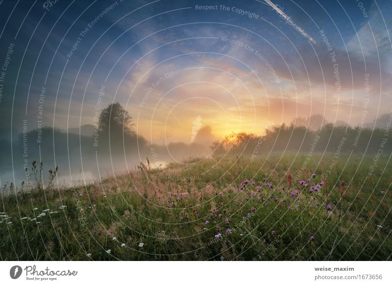 Nebelhafter Morgen auf dem Fluss. Sommer schön Ferien & Urlaub & Reisen Sonne Umwelt Natur Landschaft Pflanze Wasser Himmel Wolken Sonnenaufgang Sonnenuntergang