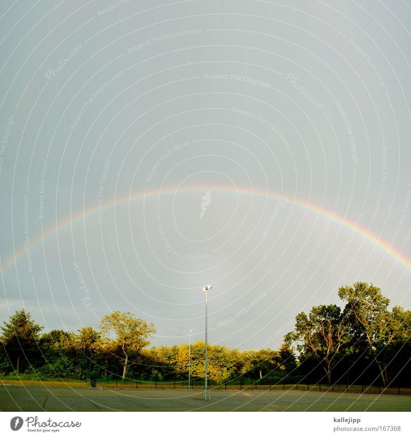 mit der sonne im rücken Natur Himmel Baum grün Wolken Glück Regen Landschaft Religion & Glaube Wetter Umwelt Horizont Hoffnung Klima Laterne Gewitter