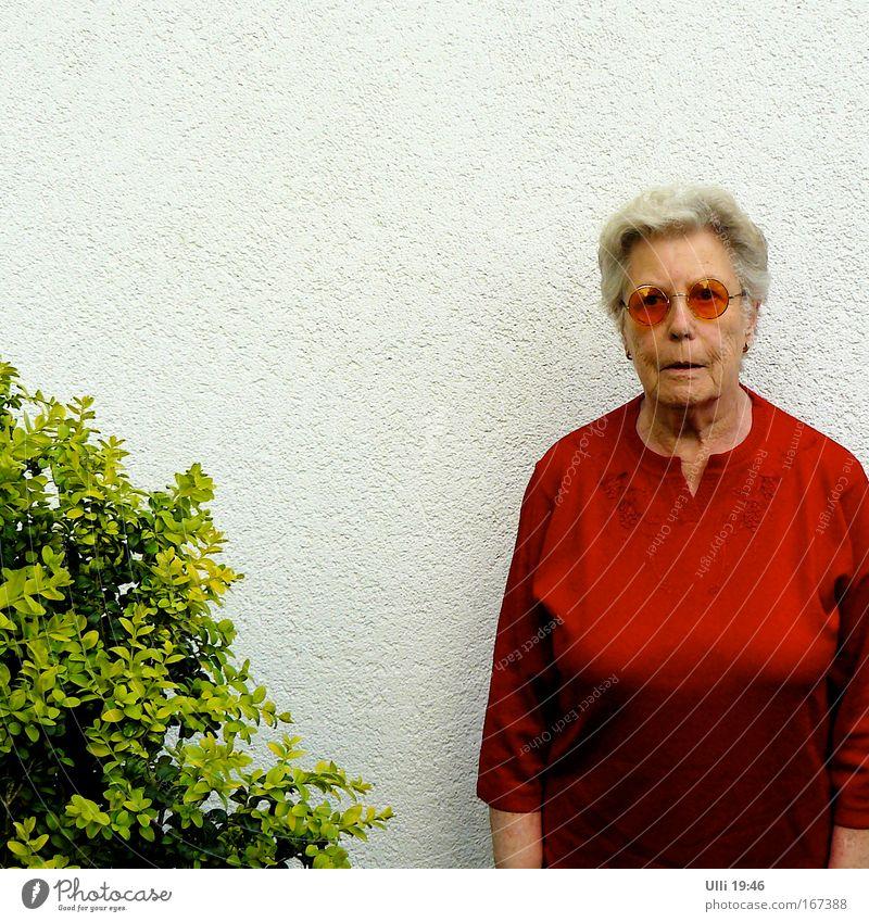 Halbes SEK ohne Werkzeug, aber mit zickigem Büschlein! Mensch Frau grün rot Erholung Wand Senior Glück Garten Mauer Zufriedenheit Freizeit & Hobby authentisch stehen Coolness Porträt