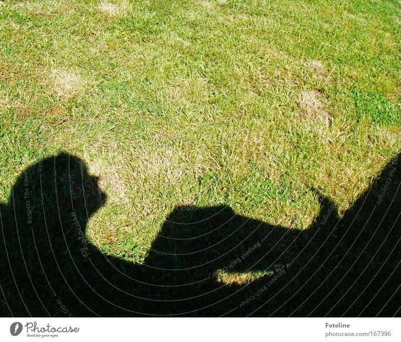 Relax Farbfoto Außenaufnahme Textfreiraum oben Tag Schatten Silhouette Sonnenlicht Glück Wellness harmonisch Wohlgefühl Zufriedenheit Erholung ruhig Freiheit
