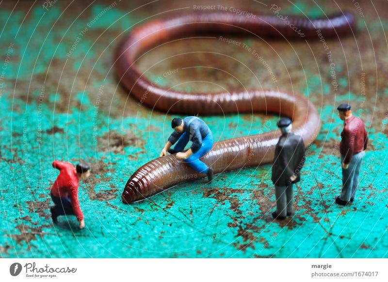 Miniwelten - Wurmreiter 500 maskulin Mann Erwachsene 4 Mensch Tier Wildtier braun türkis Publikum Reiten Regenwurm üben Querformat Miniatur Figur Schlange