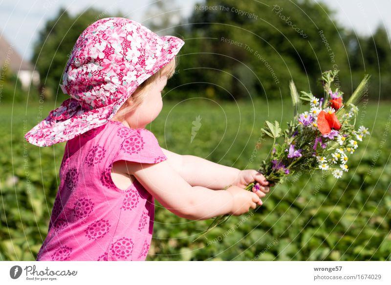 Blümchen für Mutti II Mensch Kind Sommer grün rot Mädchen Leben feminin Glück rosa Feld Geschenk Kleid Blumenstrauß Mütze rennen
