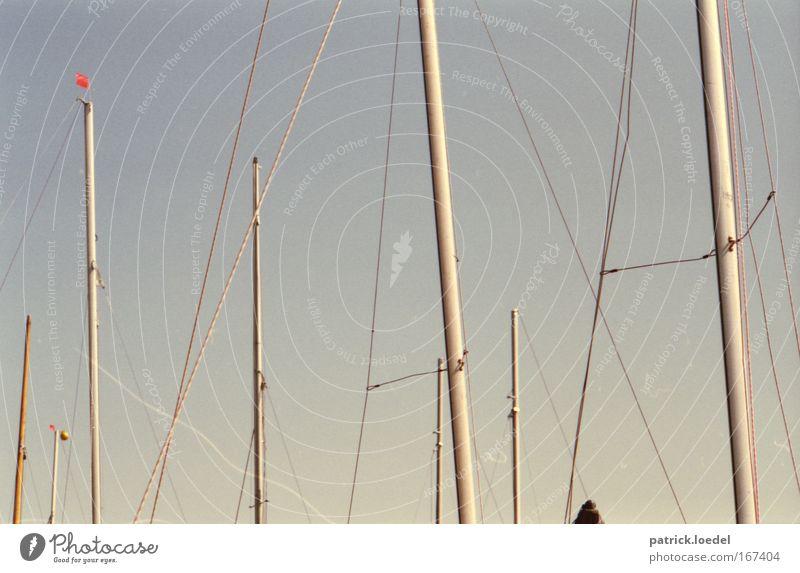 Wahrschau! Ab in die Takelage, Jungs! Himmel Sommer Ausflug Abenteuer Seil Hafen analog Schifffahrt Segeln Angeln Mast Segelboot Elbe Wassersport Kreuzfahrt Hafenstadt