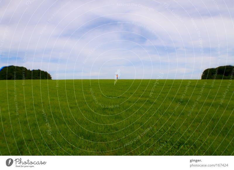 Ganz weit weg Mensch Himmel blau grün Landschaft Ferne Wiese Gras Frühling Freiheit Feld maskulin Sträucher Schönes Wetter geteilt Wolkenschleier