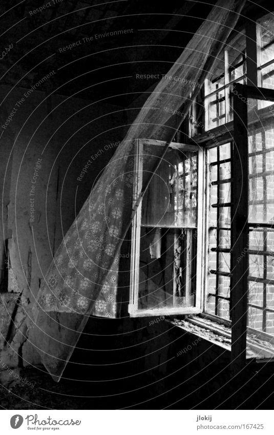 Lebenshauch Schwarzweißfoto Innenaufnahme Menschenleer Tag Schatten Kontrast Lichterscheinung Sonnenlicht Haus Industrieanlage Fabrik Ruine Bauwerk Gebäude