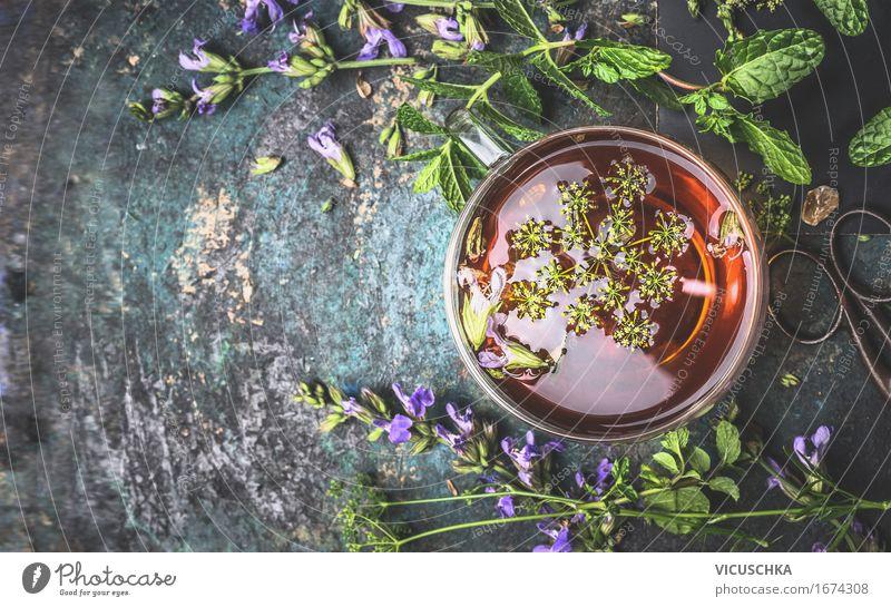 Tasse Kräutertee auf dunklem Hintergrund Natur Pflanze Sommer Gesunde Ernährung Erholung Leben Stil Gesundheit Lebensmittel Gesundheitswesen Design Häusliches Leben Tisch Kräuter & Gewürze Getränk Duft