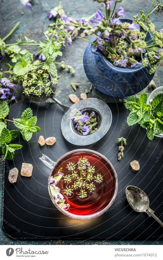 Tasse Kräutertee und verschiedene frische Kräuter Lebensmittel Kräuter & Gewürze Getränk Heißgetränk Tee Schalen & Schüsseln Lifestyle Stil Design Gesundheit