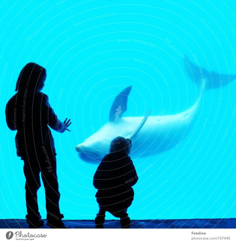 Kraul mir den Bauch! Mensch Kind Natur Wasser Hand Mädchen Meer Tier Umwelt Bewegung Küste Kindheit Zusammensein Wellen Schwimmen & Baden Finger