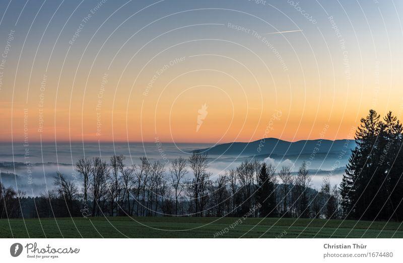 Morgennebel Himmel Ferien & Urlaub & Reisen Sommer Baum Erholung ruhig Ferne Wald Berge u. Gebirge Herbst Gras Freiheit Stimmung Tourismus Zufriedenheit Feld