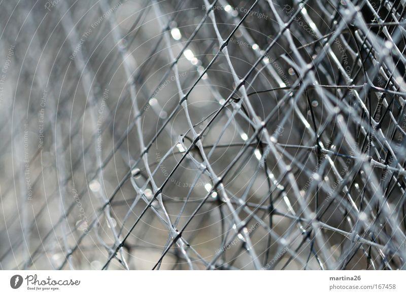 [PC-Usertreff Ffm] Gitter von der Rolle schwarz grau planen Netzwerk Technik & Technologie Kunststoff komplex überlagert vielschichtig