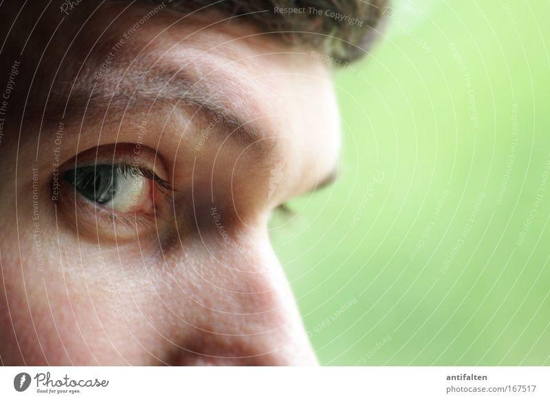Augen-Blick Haut Gesicht maskulin Mann Erwachsene Nase 1 Mensch beobachten Denken natürlich klug grün Neugier Identität Farbfoto Innenaufnahme Nahaufnahme