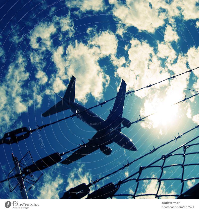 der Sonne entgegen! Farbfoto Kontrast Reflexion & Spiegelung Gegenlicht Froschperspektive Luftverkehr Himmel Wolken Flugzeug Passagierflugzeug fliegen