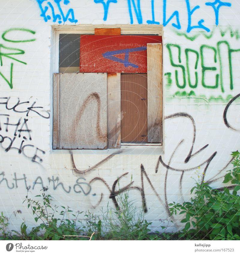 dichtung Menschenleer Tag Umwelt Natur Pflanze Sträucher Grünpflanze Mauer Wand Fassade Garten Fenster Graffiti Häusliches Leben Zerstörung Jugendkultur