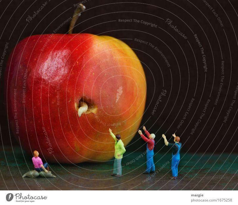 100 Miniwelten - Made im Apfel Lebensmittel Frucht Bioprodukte Vegetarische Ernährung Diät Mensch maskulin feminin Frau Erwachsene Mann 4 Tier Wildtier Wurm rot