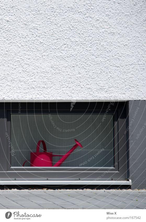ich will in den garten Farbfoto Wohnung Garten Haus Mauer Wand Fassade Fenster rosa Einsamkeit Topfpflanze gießen Gießkanne Fensterbrett