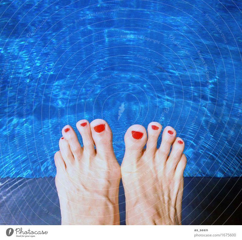 Cool am Pool blau Farbe Sommer schön Wasser Sonne Erholung rot Umwelt Wärme Lifestyle Schwimmen & Baden Fuß Wetter Freizeit & Hobby Fröhlichkeit