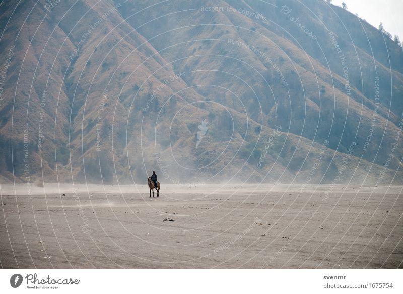 Lonely Rider exotisch ruhig Reiten Ferien & Urlaub & Reisen Ausflug Abenteuer Ferne Freiheit 1 Mensch Natur Landschaft Erde Sand Berge u. Gebirge Vulkan Insel