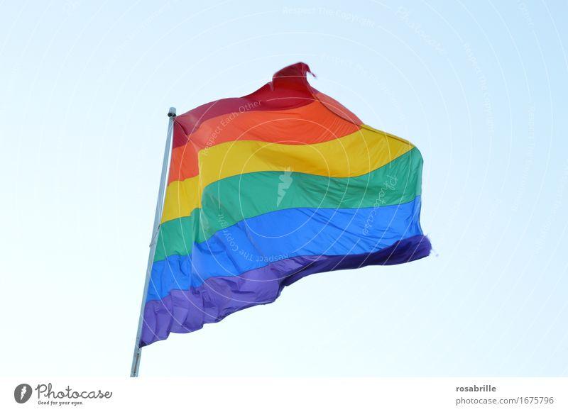 Regenbogenfahne als Symbol der Lesben- und Schwulenbewegung Homosexualität Leben Zeichen Fahne Regenbogenflagge Fröhlichkeit blau mehrfarbig gelb grün violett