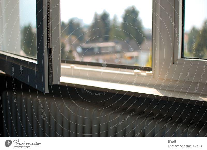 Frühlingserwachen Einsamkeit Erholung Fenster Wärme Traurigkeit Stimmung Raum Wohnung warten offen Hoffnung trist Häusliches Leben Neugier Warmherzigkeit