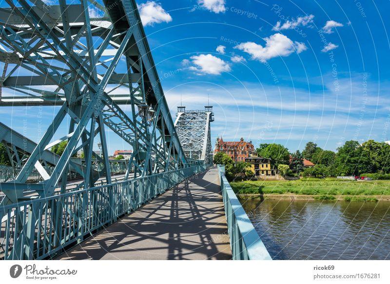 Blick über die Elbe auf Loschwitz bei Dresden Ferien & Urlaub & Reisen Tourismus Haus Wolken Baum Park Fluss Hauptstadt Brücke Gebäude Architektur