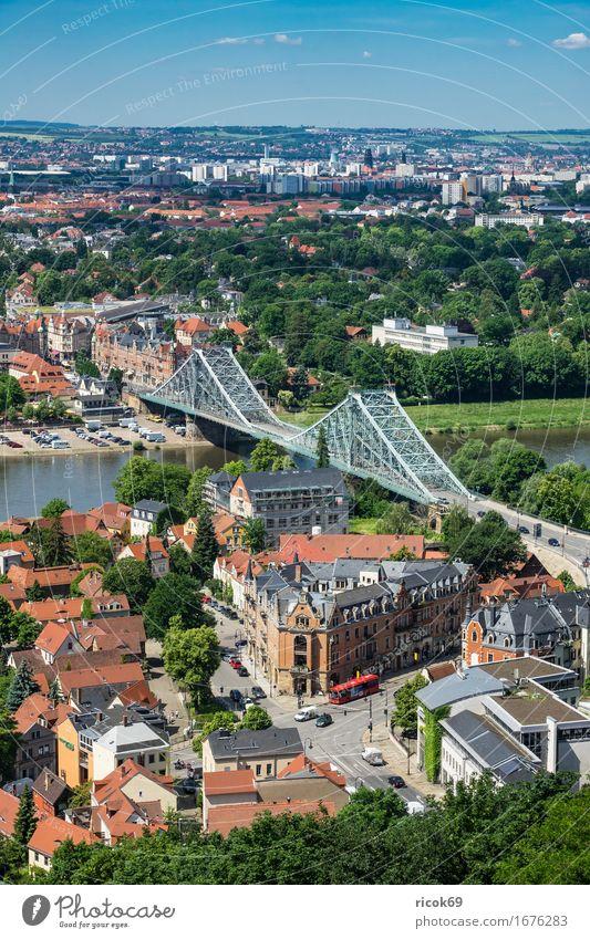 Blick über die Elbe auf Dresden Ferien & Urlaub & Reisen Tourismus Haus Wolken Baum Park Fluss Hauptstadt Brücke Gebäude Architektur Sehenswürdigkeit blau grün