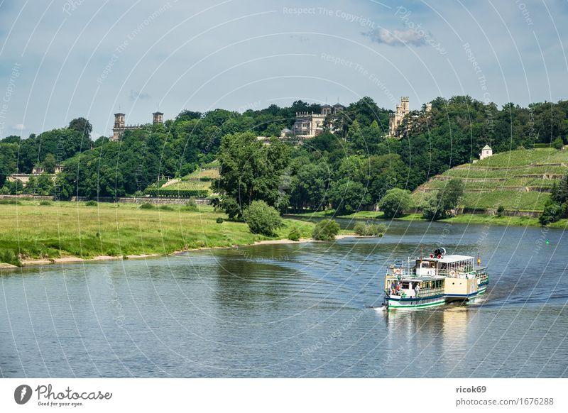 Fahrgastschiff auf der Elbe bei Dresden Ferien & Urlaub & Reisen Tourismus Wasser Wolken Baum Fluss Hauptstadt Architektur Sehenswürdigkeit Dampfschiff blau