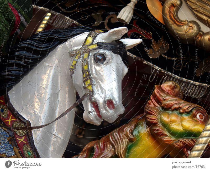 Perlmuttschimmel Pferd Jahrmarkt historisch Karusell Schimmelpilze altmodisch
