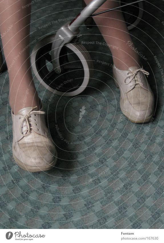 Gehhilfen Mensch Frau alt Senior Fuß Schuhe Schutz Gesellschaft (Soziologie) Mobilität Weiblicher Senior Willensstärke geduldig Selbstständigkeit achtsam Solidarität