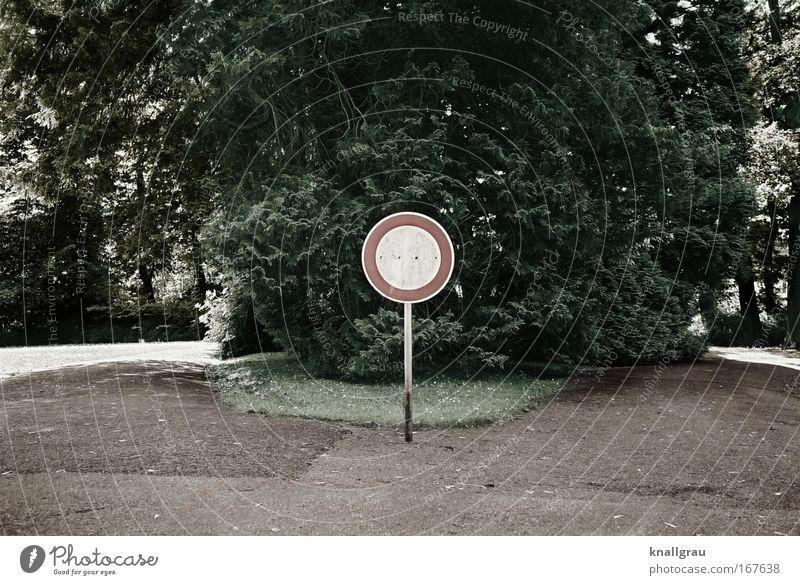 No entry! Baum Wege & Pfade Park Landschaft Straßenverkehr Schilder & Markierungen Verkehr Ordnung Hinweisschild Verkehrswege dumm skurril Autofahren Verbote