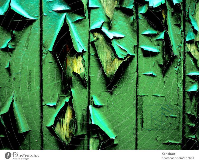 verfall. und verlust. alt grün Umwelt Holz Traurigkeit Linie Kunst Fassade Design ästhetisch verrückt kaputt Wandel & Veränderung Zeichen trashig Verfall