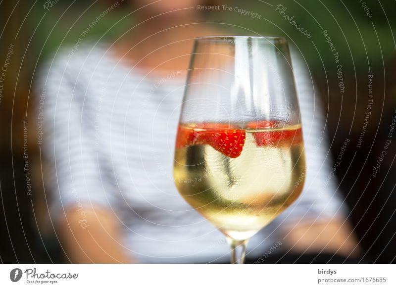 genießen Frucht Erdbeeren Getränk Alkohol Wein Sekt Prosecco Bowle Sektglas Weinglas feminin Junge Frau Jugendliche 1 Mensch Duft sitzen ästhetisch