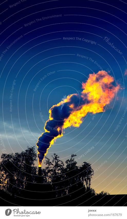 Rauchvergiftung Natur Himmel blau gelb dunkel Luft Umwelt Industrie Energiewirtschaft Fabrik bedrohlich Klima Unendlichkeit Rauch Schornstein Elektrizität