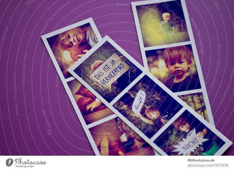 Fotos von Fotos Mensch Kind Kleinkind Junge 1 1-3 Jahre Natur Wald Spielen außergewöhnlich klein niedlich violett Freude Glück Zufriedenheit Leben einzigartig