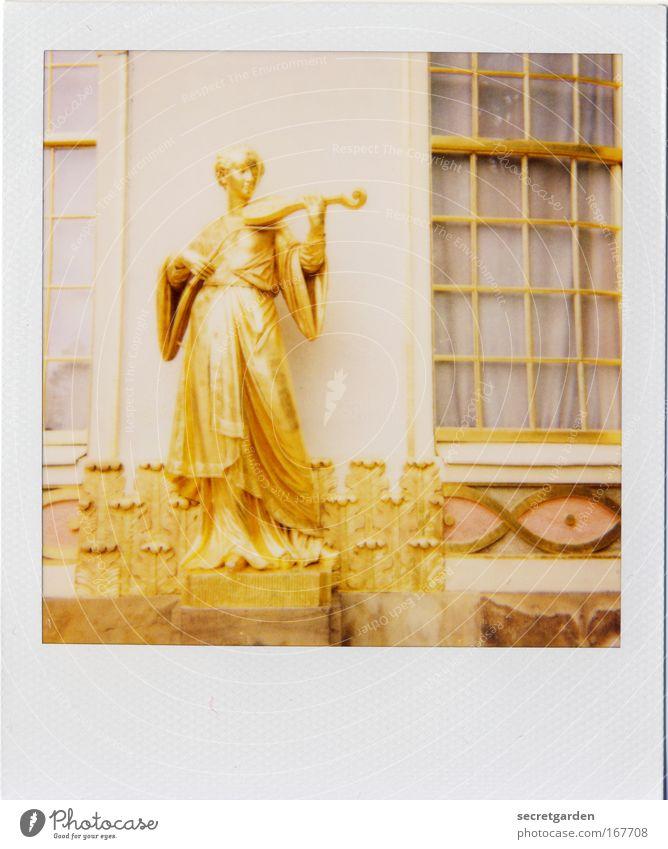 goldgrube photocase! Frau Mensch Sommer Erwachsene feminin Fenster Wand Architektur Gebäude Mauer Park Musik Kunst gold elegant