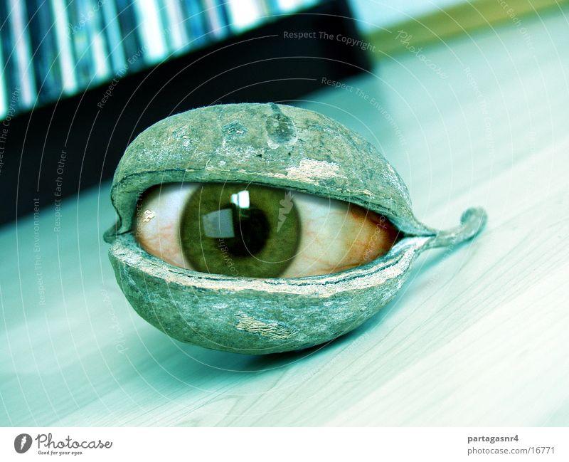 ICU Auge obskur Schote