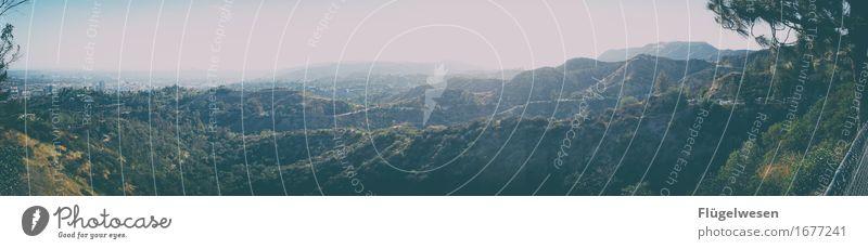 One Day in L.A. Ferien & Urlaub & Reisen Pflanze Baum Ferne Wald Berge u. Gebirge Straße Freiheit Tourismus Nebel Hochhaus Ausflug Schilder & Markierungen