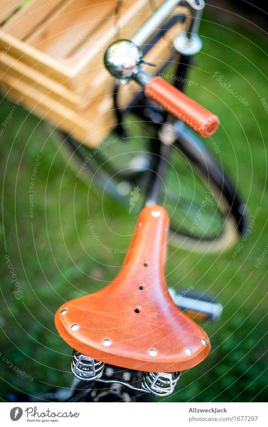 Hollandrad-Porn 12 Fahrradfahren trendy retro braun grün schwarz Mobilität nachhaltig Nostalgie Güterverkehr & Logistik Stadt Lastenfahrrad Ledersattel