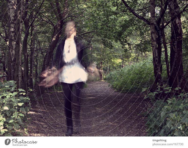 im wald. Mensch Natur grün weiß Baum Blatt schwarz Wald feminin springen träumen Erde gehen laufen Sträucher Fußweg