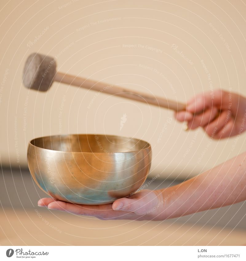 Klangschalenschlag Mensch Hand Erholung ruhig Leben Gefühle feminin Gesundheit Metall Zufriedenheit gold Arme genießen Wellness Wohlgefühl harmonisch