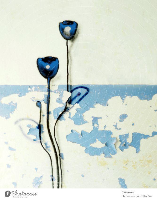 Mauerblümchen Natur schön Blume Pflanze ruhig Erholung Stein Landschaft Graffiti Kraft Kunst Hoffnung Wachstum trist stehen Dekoration & Verzierung