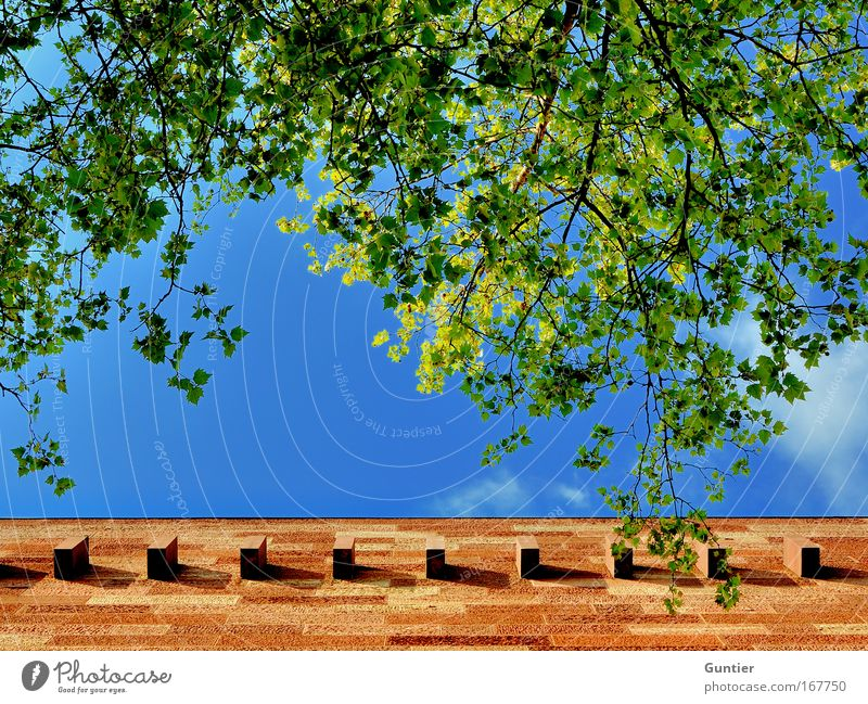 Mauern blau grün Baum Pflanze rot Sommer Einsamkeit gelb Wand Architektur Gebäude Wetter braun Fassade