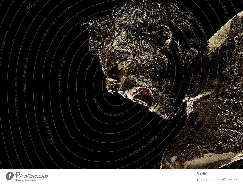 scheißtyp Farbfoto Studioaufnahme Blitzlichtaufnahme Porträt Profil Blick nach unten Mensch maskulin Mann Erwachsene Haut Kopf Haare & Frisuren Gesicht Auge Ohr