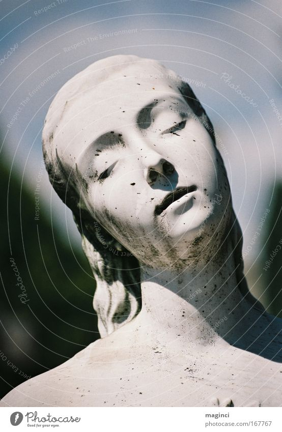 Mensch schön weiß grün blau Gesicht schwarz Auge feminin Haare & Frisuren grau träumen Kopf Traurigkeit Mund Zufriedenheit