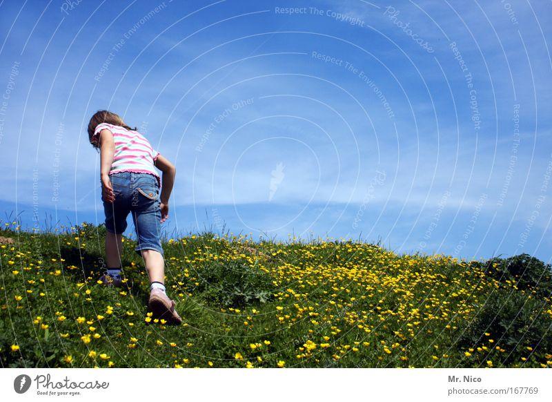 on top Himmel Natur blau grün Mädchen Sommer Berge u. Gebirge oben Freiheit Zufriedenheit Rücken Freizeit & Hobby wandern Ausflug Klettern Hügel